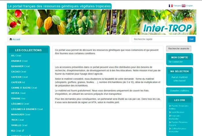 visuel du site InterTROP